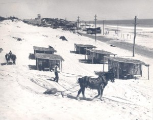 1920s_3 Ph0145-01 Horsemen compacting beach, no date - colour