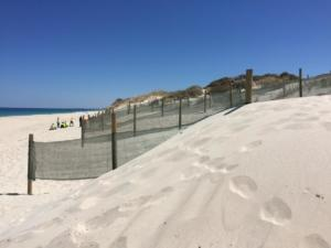 Sand build-up in a month1